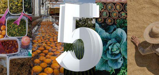 От семето до рафта: Как иновациите на IBM ще преобразят всеки етап от веригата на доставките на храни в следващите пет години