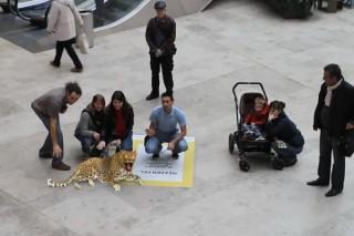Augmented reality в мола с National Geographic
