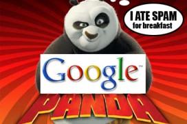 mnenie-za-promenite-nalojeni-ot-google-panda