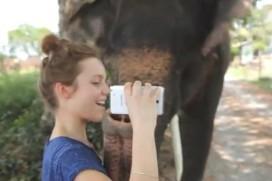 Слон свири на Galaxy Note