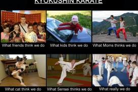 Kyokushin Meme