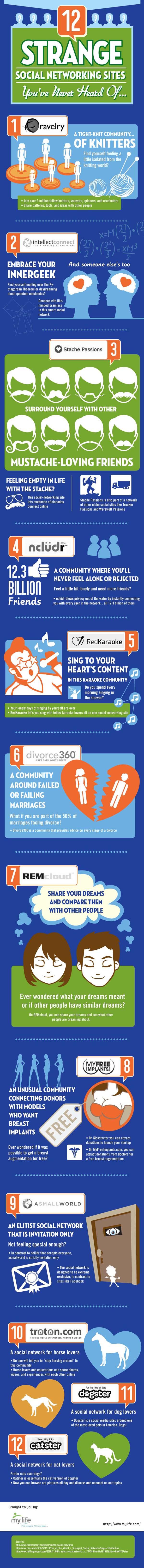 инфографика на 12 сайта от Mylife.com